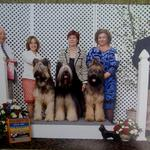 Udo winning the stud dog class at the Briard Club of America National 2011 with daughter Maggie and son Buzz