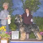 Udo finishing his championship at the Atlantic States Briard Club specialty weekend. Here he is pictured winning Best In Sweepstakes under judge June Penta on the same weekend at 10 months old.